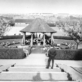 The Park Bandstand in the 1950's.