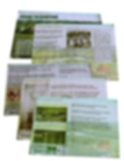 BANNERS FOR SITE.jpg