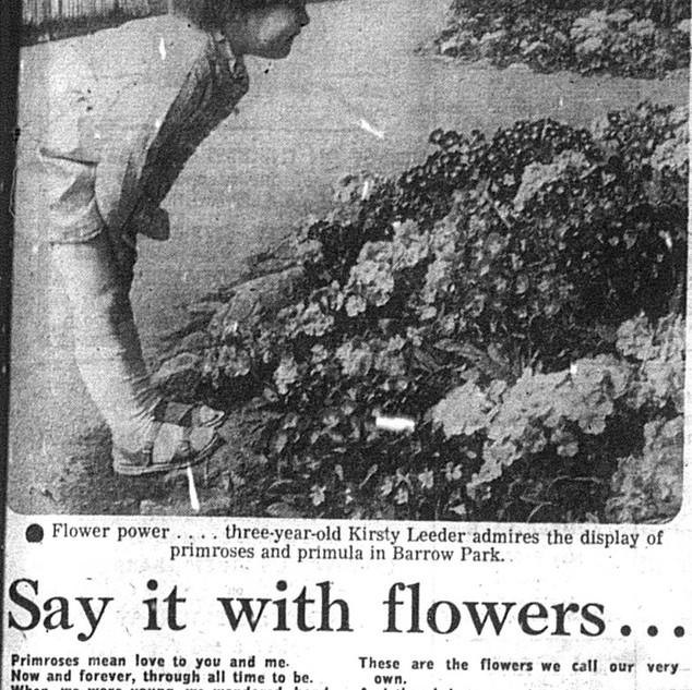 FLOWERBEDS AND POETRY, 1982.jpg