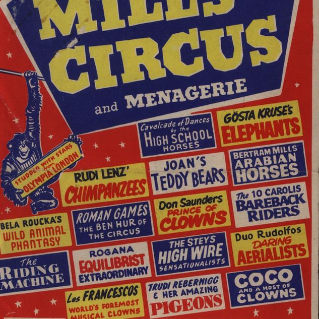 Circus in park0002.jpg