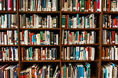 bookcase-books-bookshelf-1370295.jpg