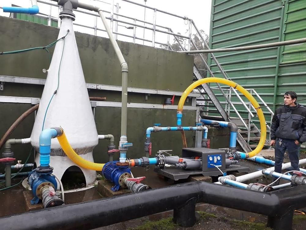 Nanobubbles Increase Profitability of Aquaculture in Australia and New Zealand