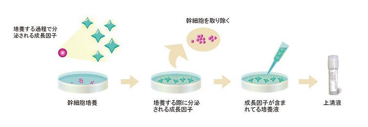 上清液示意图-jp.jpg