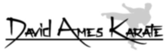 David Ames Karate Akron Ohio
