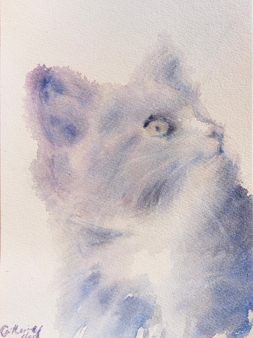 Casper in Watercolour
