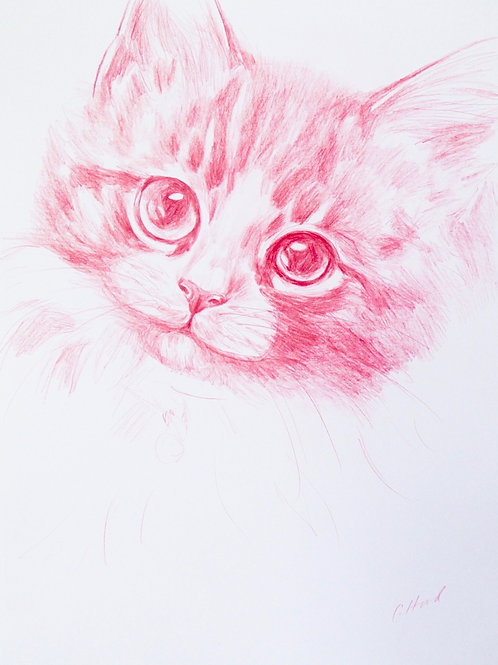 Pink Kitten With Bell
