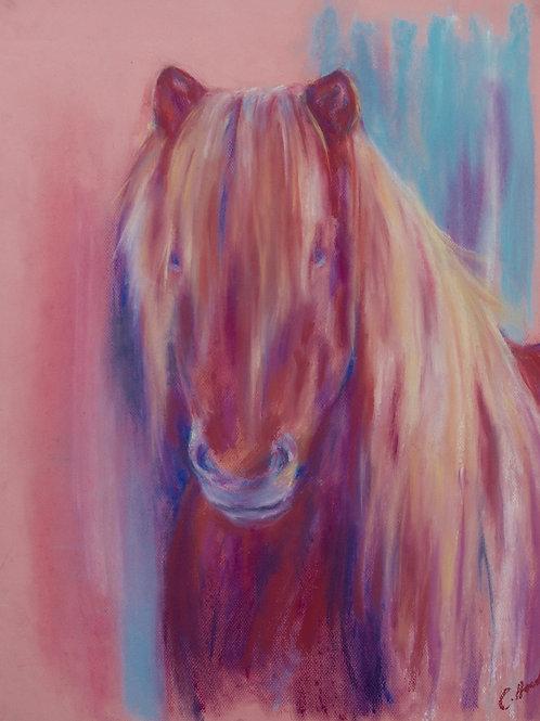Bright Pink Icelandic Horse