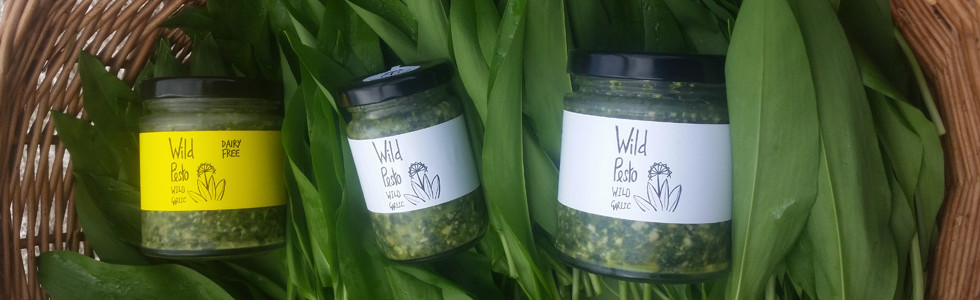Jars of Wild Pesto