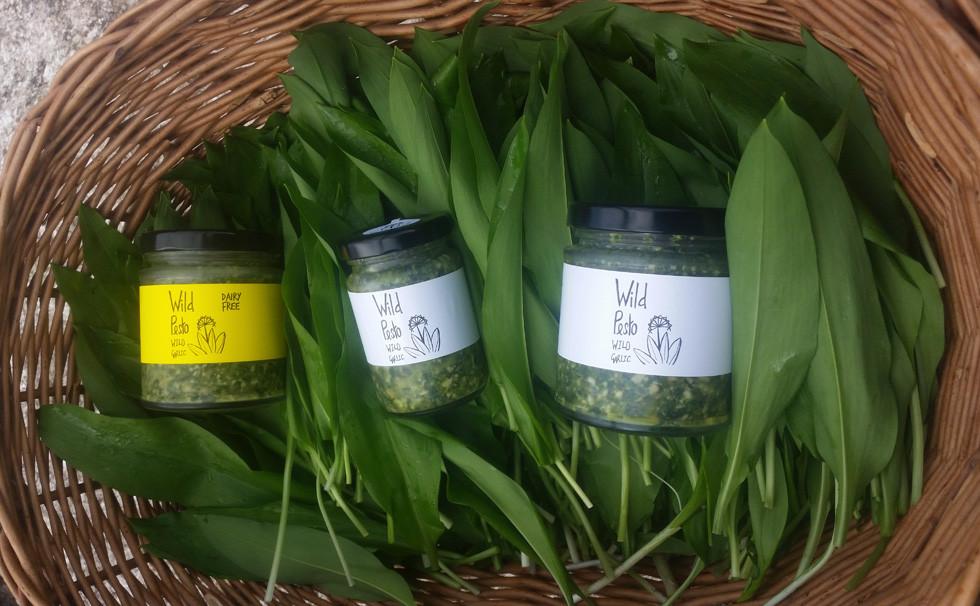 Jars of Wild Pesto