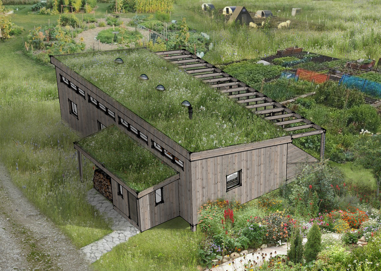 Green roof on the modular home design