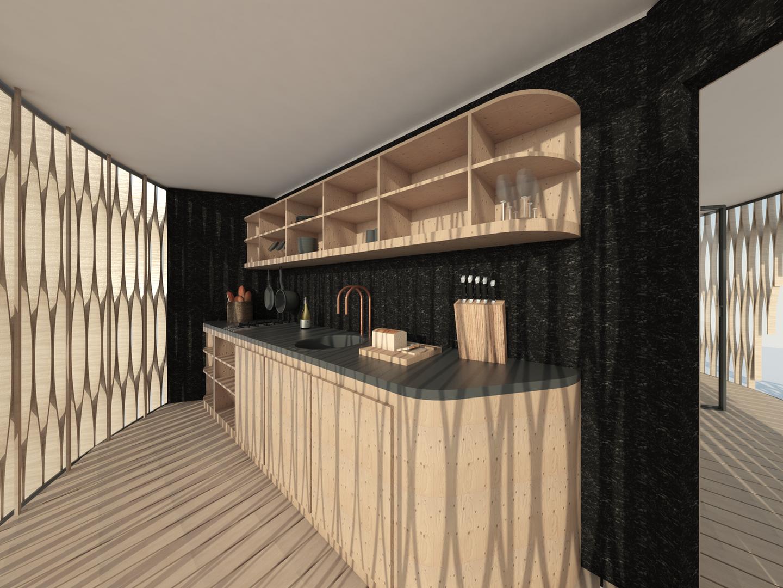 Birch plywood kitchen in pod