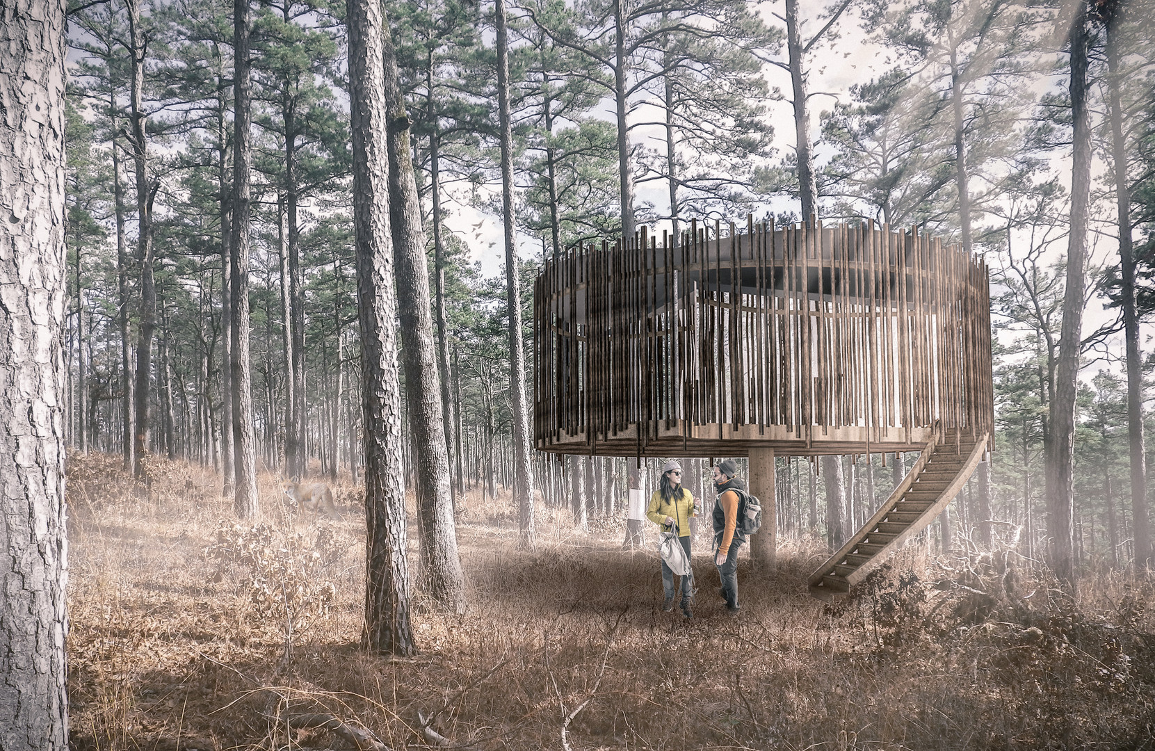 Castan treehouse in Welsh woodland