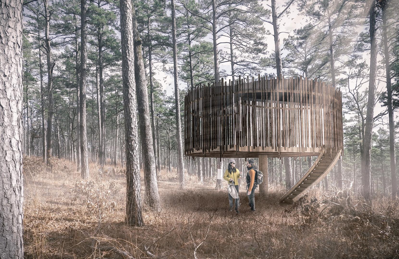 Castan treehouse in Welsh woodland