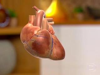 Infecção por vírus ou bactéria pode provocar problemas cardíacos