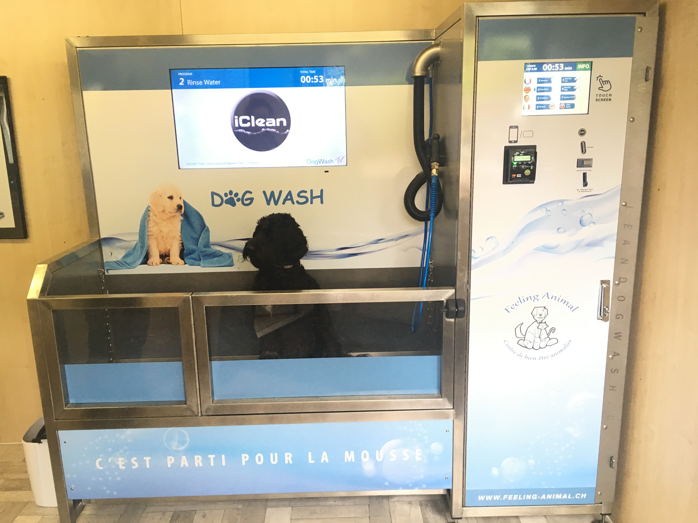 Station de lavage canin