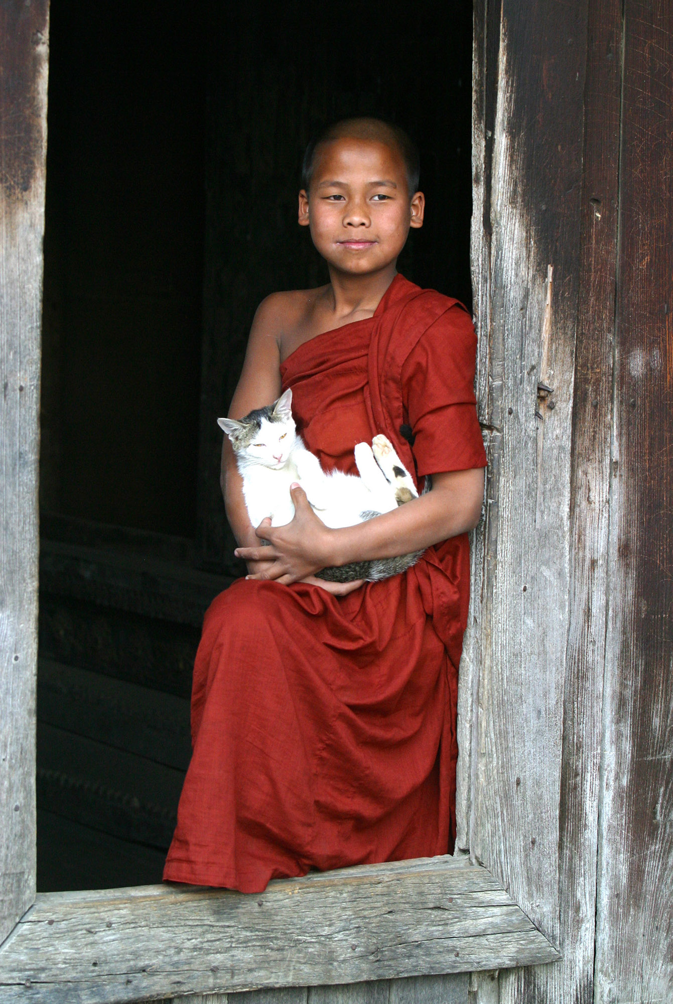 Young_Monk_and_Cat