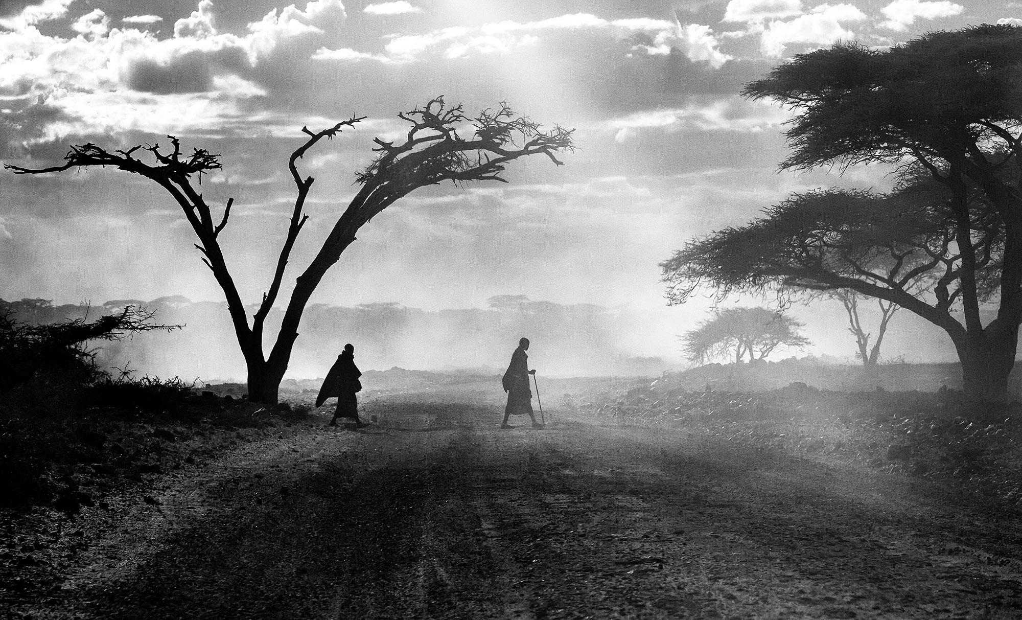 Serengeti_Silhouettes