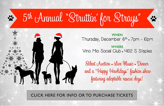 Struttin' for Strays - Click here for info and to purchase tickets!
