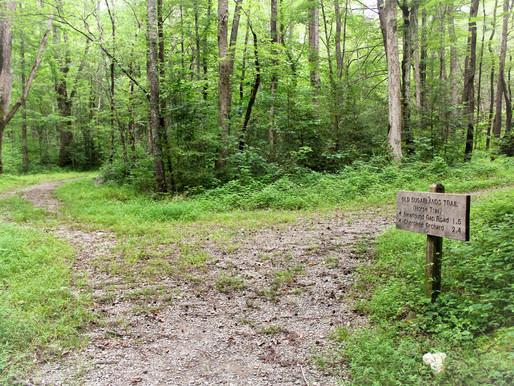 The Unfinished Journey: A Walk Around the Medicine Wheel