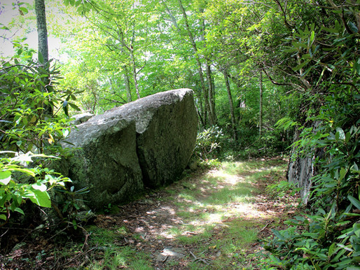 Lessons from a Smoky Mountain Rock