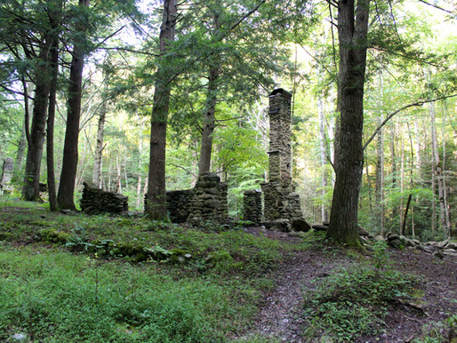 The Chimneys of Elkmont:  Shadows of the Past