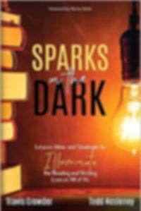 Sparks in the Dark .jpg