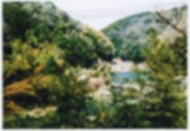 大友氏3.jpg