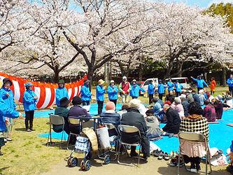野菊の会.JPG
