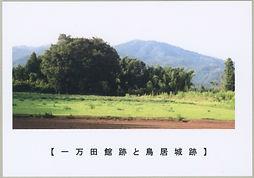 大友氏2.jpg