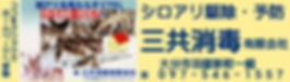 三共消毒.JPG
