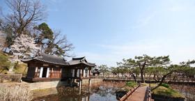 WCG Korea 1.jpg