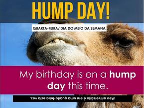 Você conhece a expressão HUMP DAY?