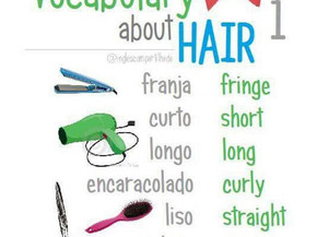 Vocabulary about hair 1