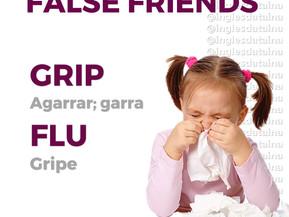 FALSE FRIENDS: GRIP & FLU