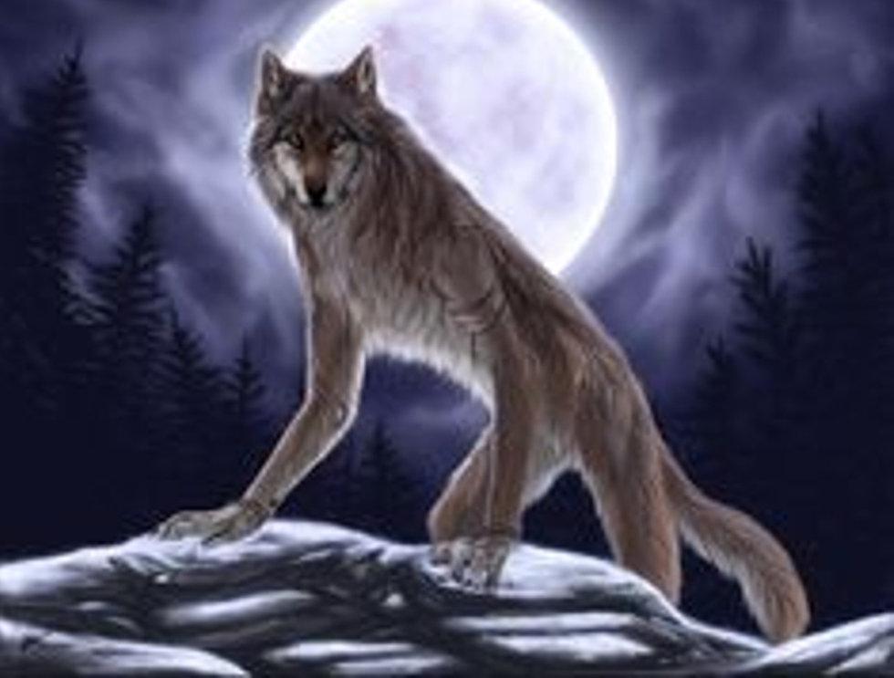 werewolf_edited.jpg