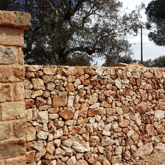 Muro del tipo rustico cod. 04
