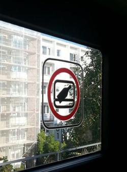 No Bowling on Train