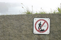 No Stomping Out Fires