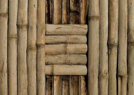 El bambú, un material ecológico y sostenible