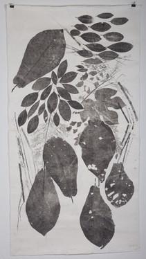 celeste artwork-7.jpg