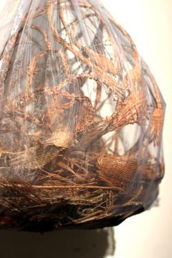 """Long Leaf Pine Needle """"Womb"""""""