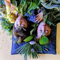 Moriumius Plant People series