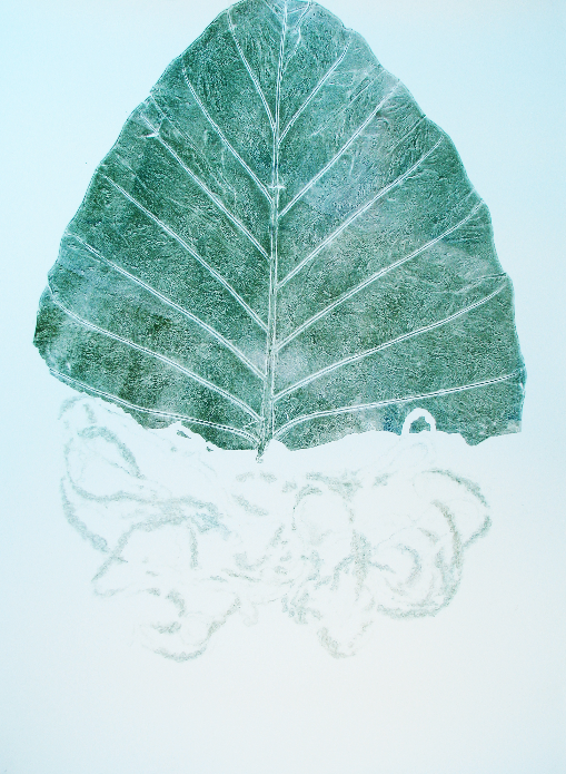 leaf composition