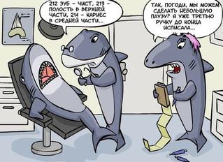 Зубная боль: что можно сделать до визита к стоматологу?