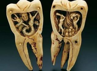 Маленькие зубы — большой мозг?