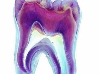 Усовершенствовать зубные имплантаты пытаются в Канаде