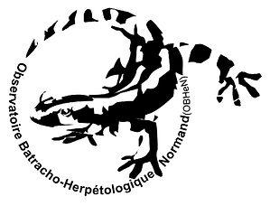 Logo de l'OBHeN