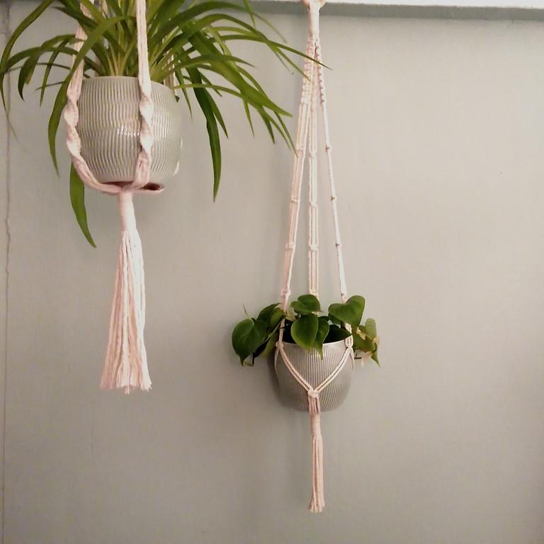Makramee Blumenampel inkl. Pflanze im Übertopf