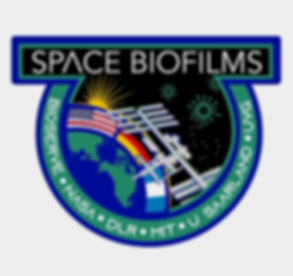 space biofilms logo_edited_edited_edited