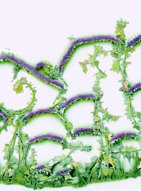 Gypsum vines